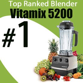 Vitamix Top Ranked Blender Button